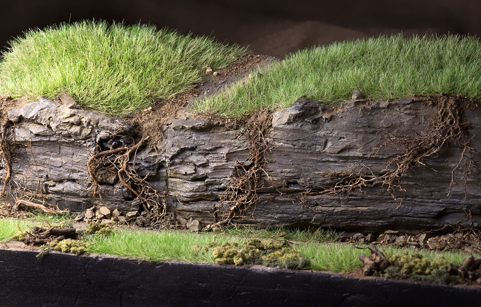 Using Tree and Plant Roots in Model Train Scenery | Raildig com