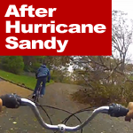 After Hurricane Sandy On Long Island