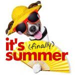 It's Finally Summer!